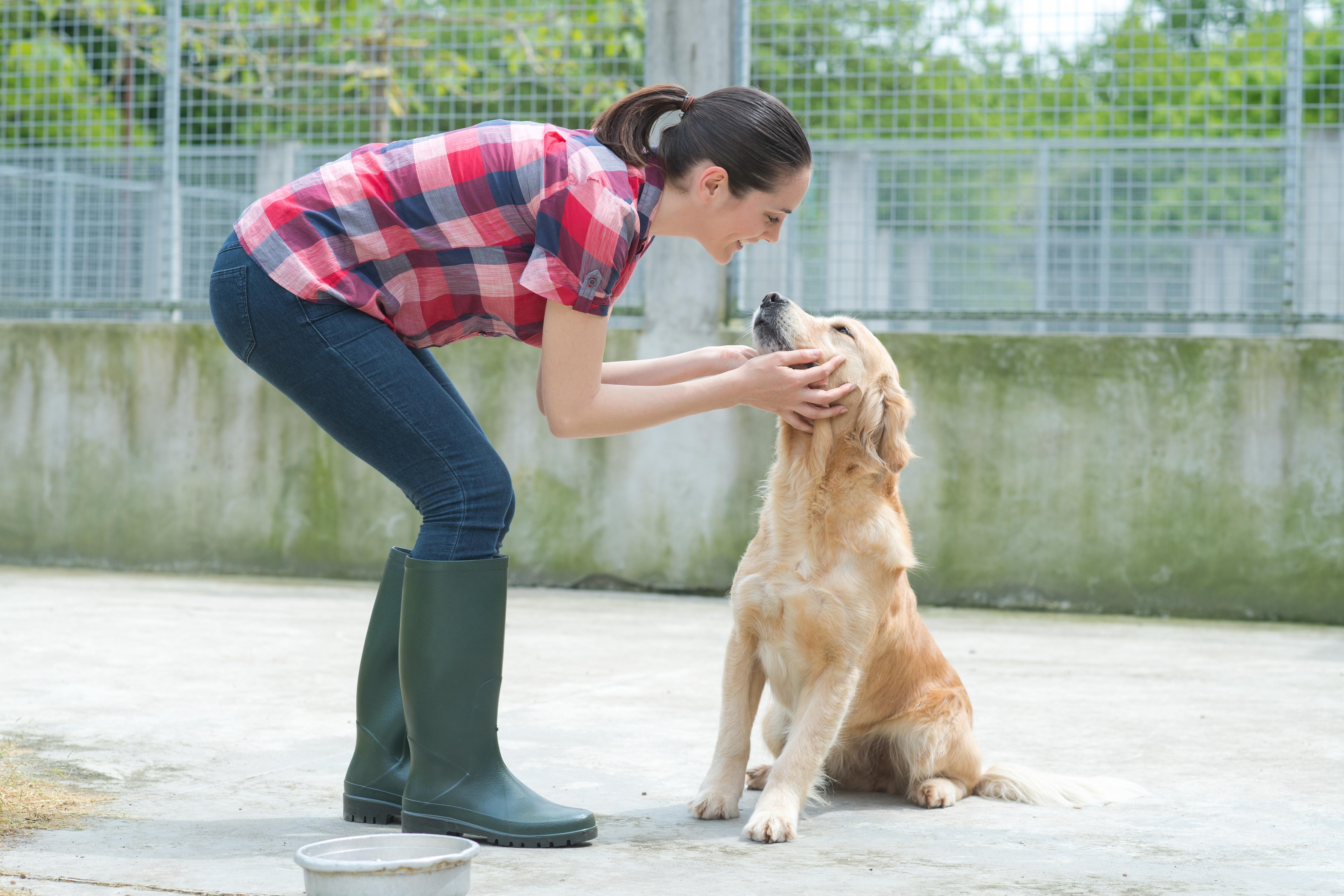 Association de protection des animaux